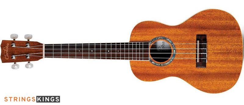 Cordoba Concert Ukulele best ukulele for beginners