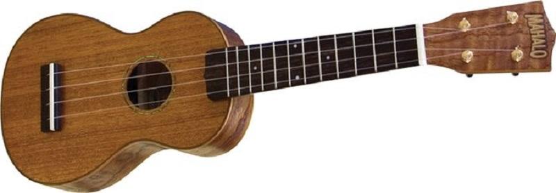 best ukulele brand for beginners