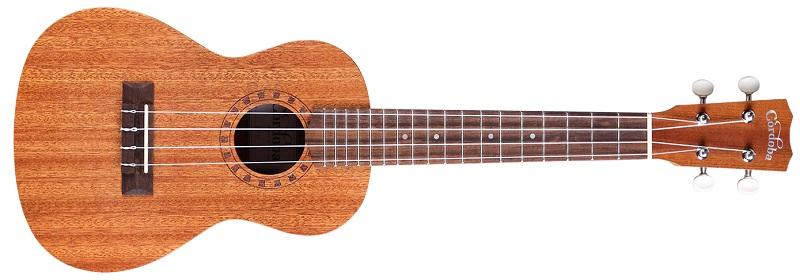 best ukulele brand for beginners 10