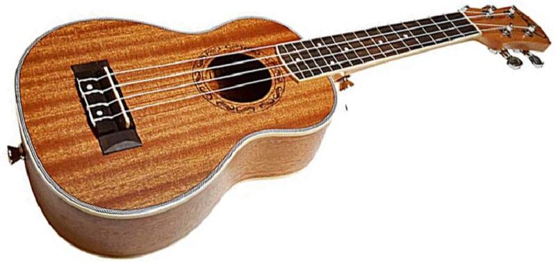 best ukulele brand for beginners 2