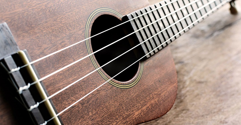 Steel Ukulele Strings 1