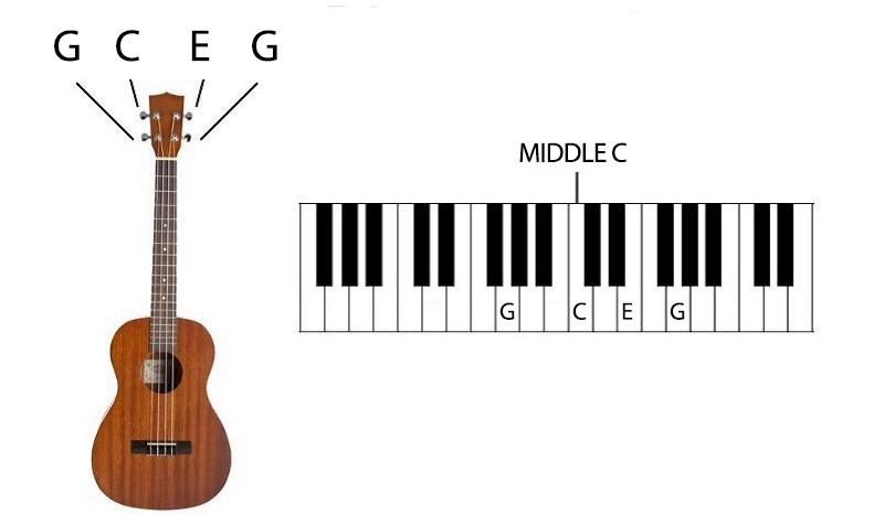 Ukulele Lessons for Beginners GCEG