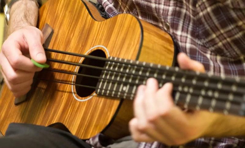 bass strings player 2