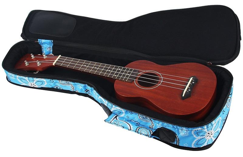 concert ukulele case