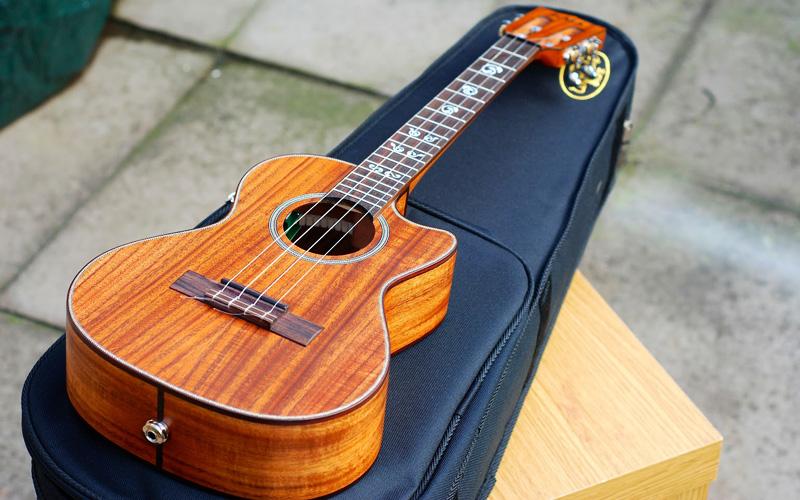 ukulele bag 5