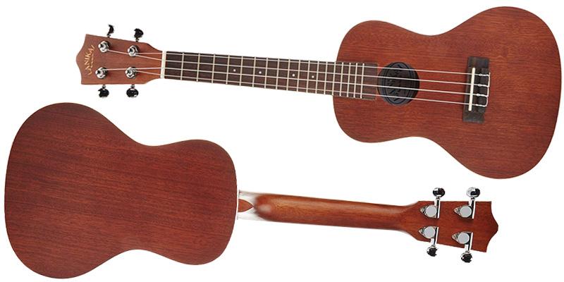 LU-21C Concert model